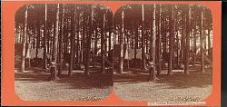 """Indian encampment, Saratoga"""