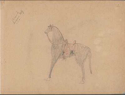 Sampson Kelly drawing of horse with Western saddle, 1904