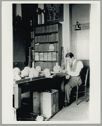 Henry B. Collins studying human skulls in a work area at the SI Department of Anthropology 1928