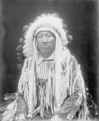 Portrait (Front) of Jacob Tall-Bull in Native Dress with Headdress 1914