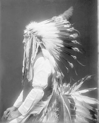 Portrait (Profile) of Lone Elk in Partial Native Dress with Headdress 1914