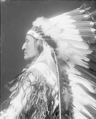 Portrait (Profile) of O-Kum-Harket or Laban (Little Wolf) or (Coyote) in Native Dress with Headdress MAR 1913