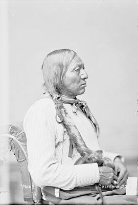 Portrait (Profile) of Waun in Partial Native Dress 1880