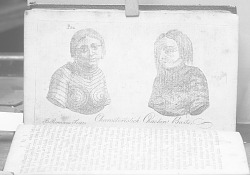 """""""Characteristic busts of Choctaw Indians"""""""