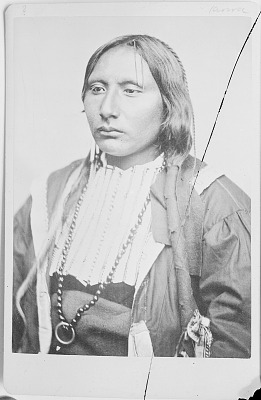 Portrait of Chief Ado-Eette (Big Tree) in Native Dress and With Hairpipe Breastplate 1870