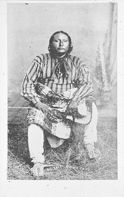 Portrait (Front) of Chief Big Tree in Partial Native Dress n.d