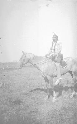 Tsendon [Horse Hunter] 1893