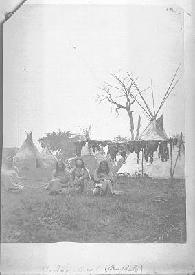 Camp scene, Kiowa Reservation, Oklahoma, showing method of drying meat