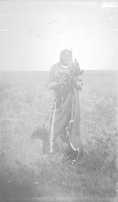 Gunavi or Many Tipi Poles 1893