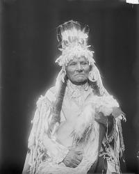 [Tsutlim-moxmox or Yellow Bull] 1912