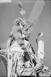 Perits-Shinakpas or Paretche-Mark-Bosh, Called Medicine Crow, in Native Dress with Ornaments and Holding Fan 1880