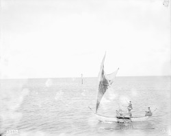 [Three men sailing in outrigger canoe, Jaluit Lagoon, Marshall Islands] 1899-1900