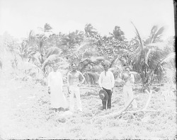 [Three men and woman standing in field, Hereheretue Atoll, Tuamotu Archipelago] 1899-1900