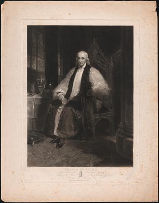 William White, D.D.