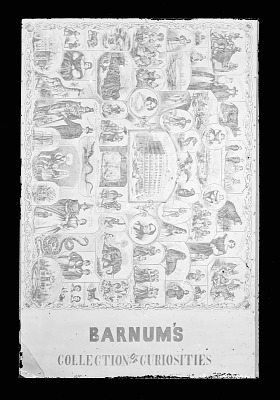 Barnum's Collection of Curiosities