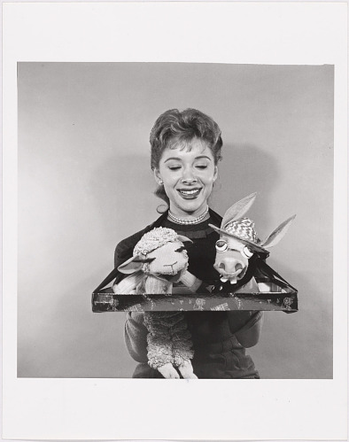 Image for Shari Lewis