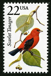 22c Scarlet Tanager single