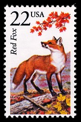 22c Red Fox single