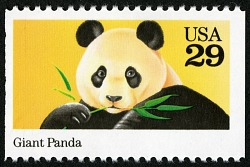 Zoology Introduction: Observing Pandas
