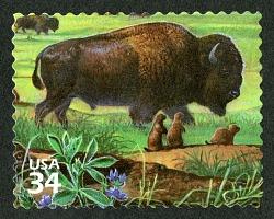 34c American buffalo, Black-tailed Prairie Dogs and Wild Alfalfa single