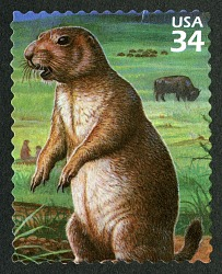 34c Black-tailed Prairie Dogs and American Buffalo single