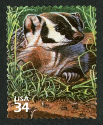 34c Badger and Harvester Ants single
