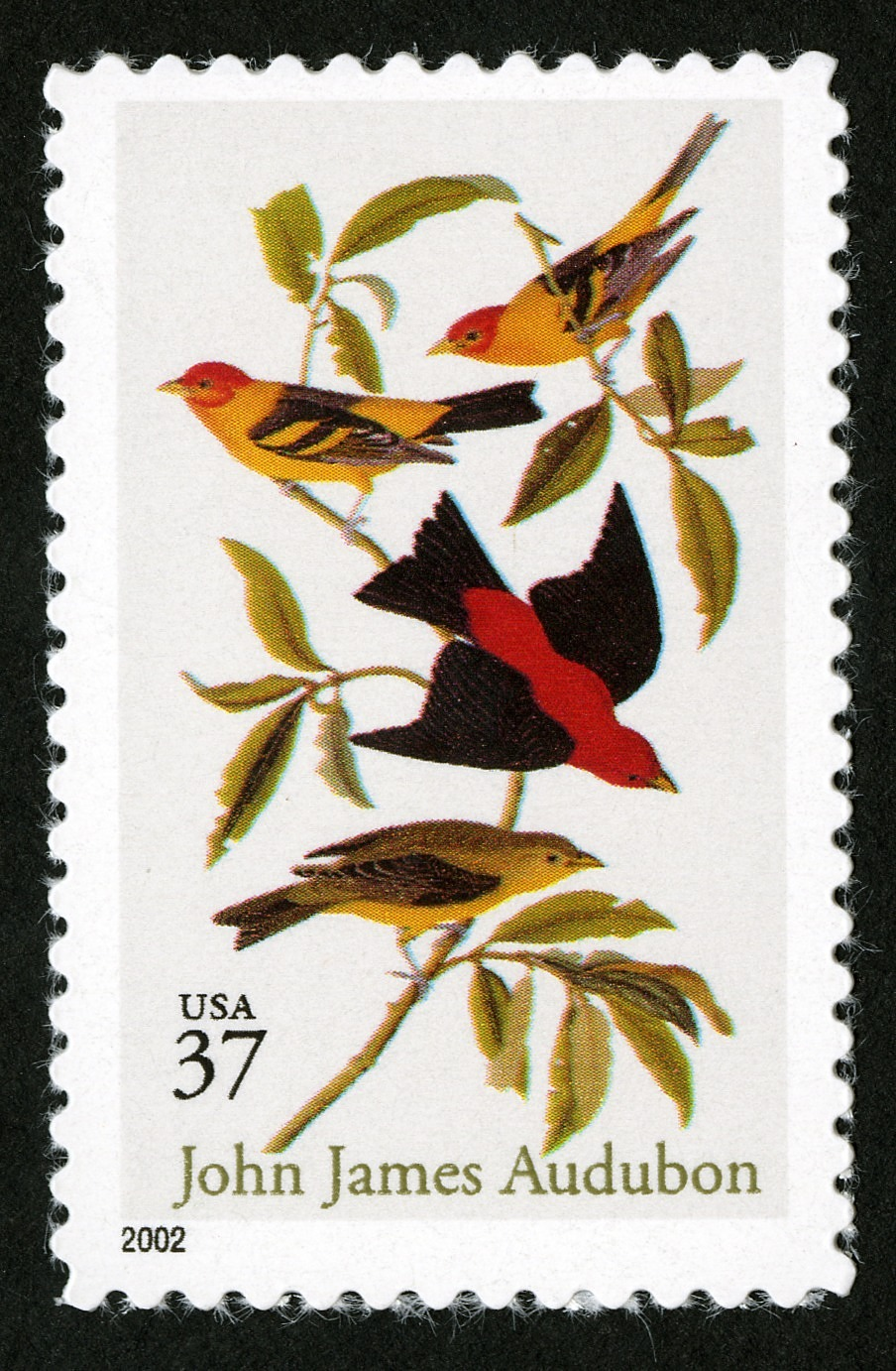 images for 37c Scarlet and Louisiana Tanagers single