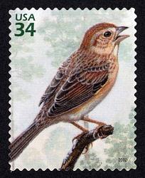 34c Bachman's Sparrow single