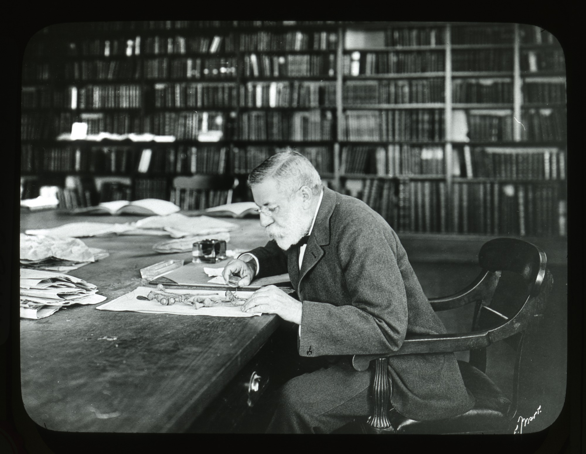 Charles Sprague Sargent in the Arnold Arboretum Library