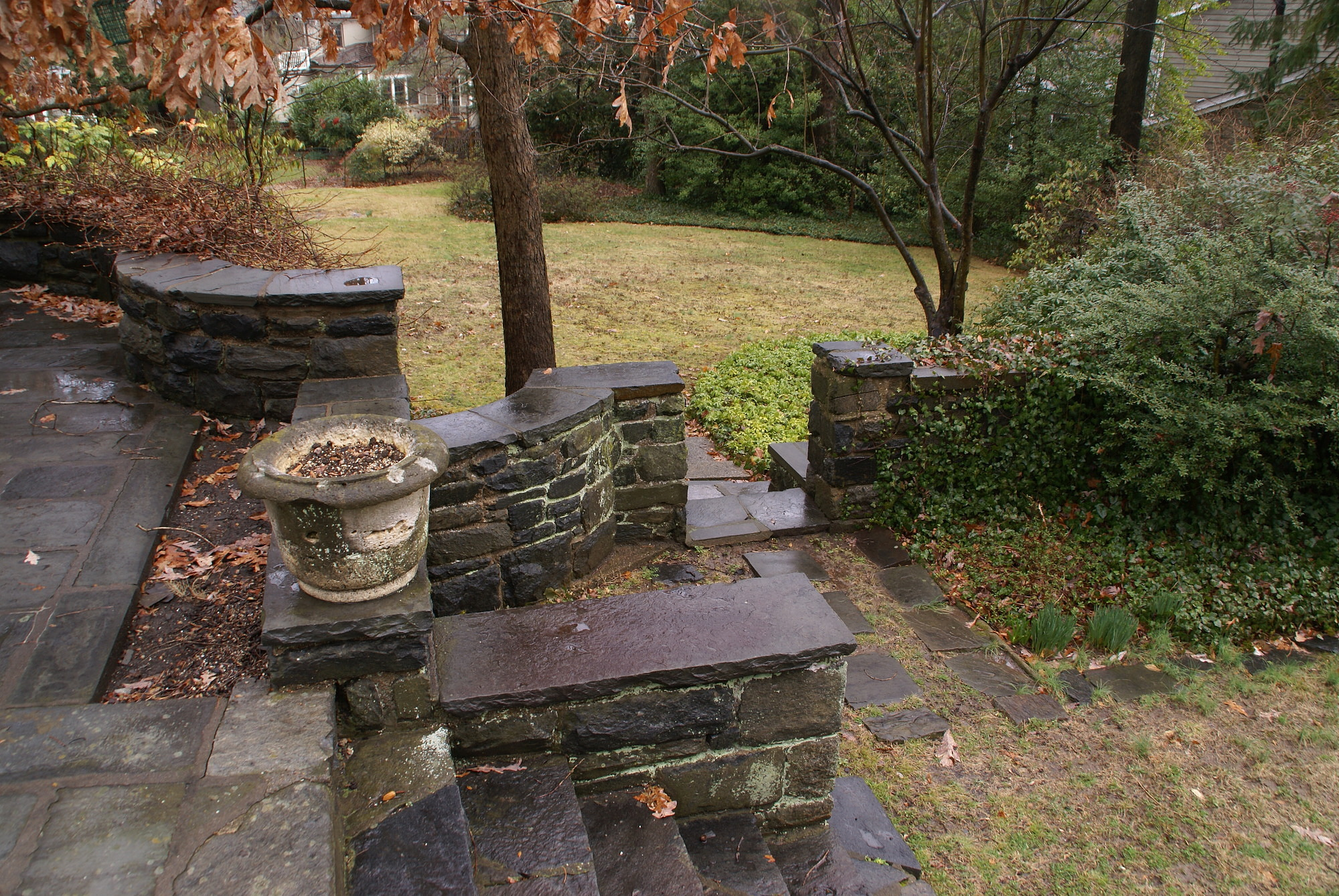 [Marsh Garden]: the hardscape includes steps between the terraces, and a view of lawn that once was a rose garden.