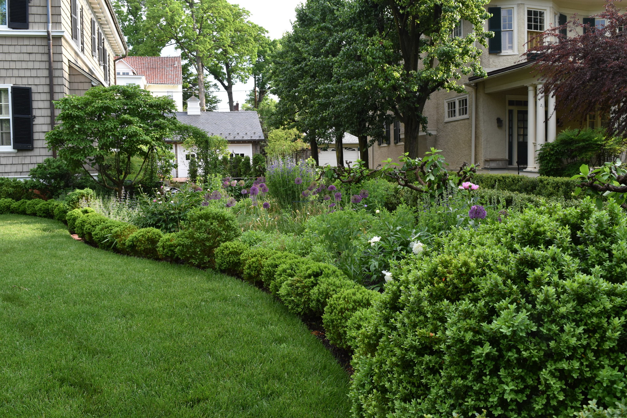 [Charles F.R. Ogilby House]: Perennial border in the front yard in spring.