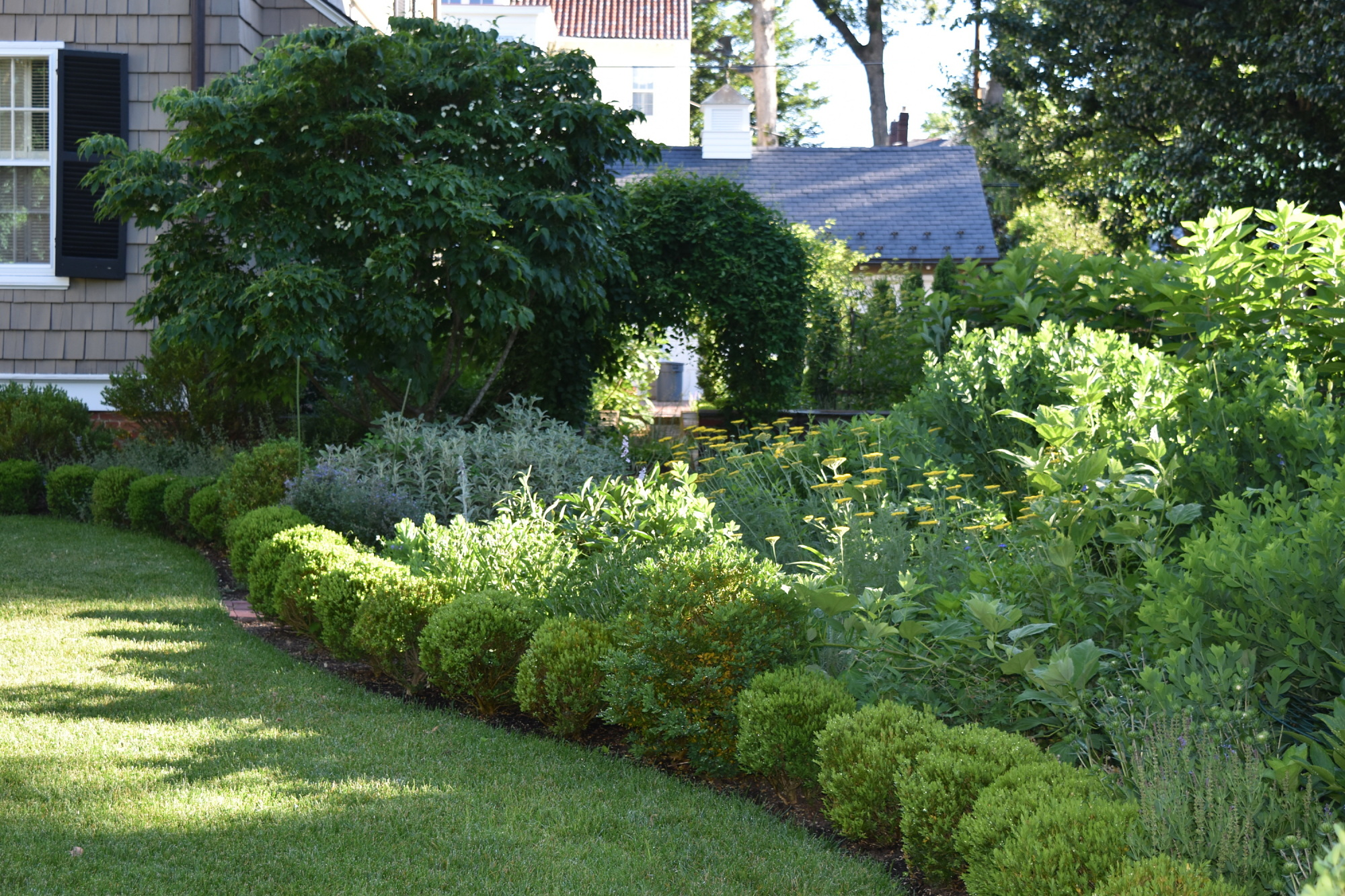 [Charles F.R. Ogilby House]: The border in summer with the clematis covered arch.