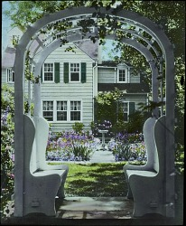 American Gardens Feature Image
