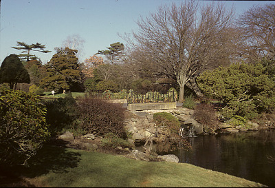 [The Admiralty] [slide (photograph)]: bridge with iron fence over waterfall in pond; shrubs and rocks on bank