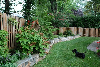 [Barbara's Garden] [photograph (digital)]: serpentine stone wall with plantings, hummingbird feeder, and gourd birdhouse with the owner's Scottish Terrier