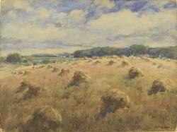Maryland Wheat Fields