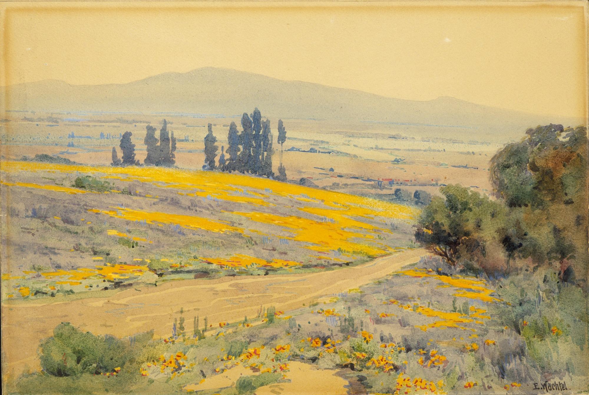 images for California Spring Landscape