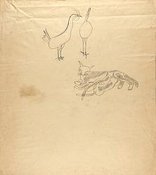Animal Sketches--Two Roosters, Cat Nursing Two Kittens