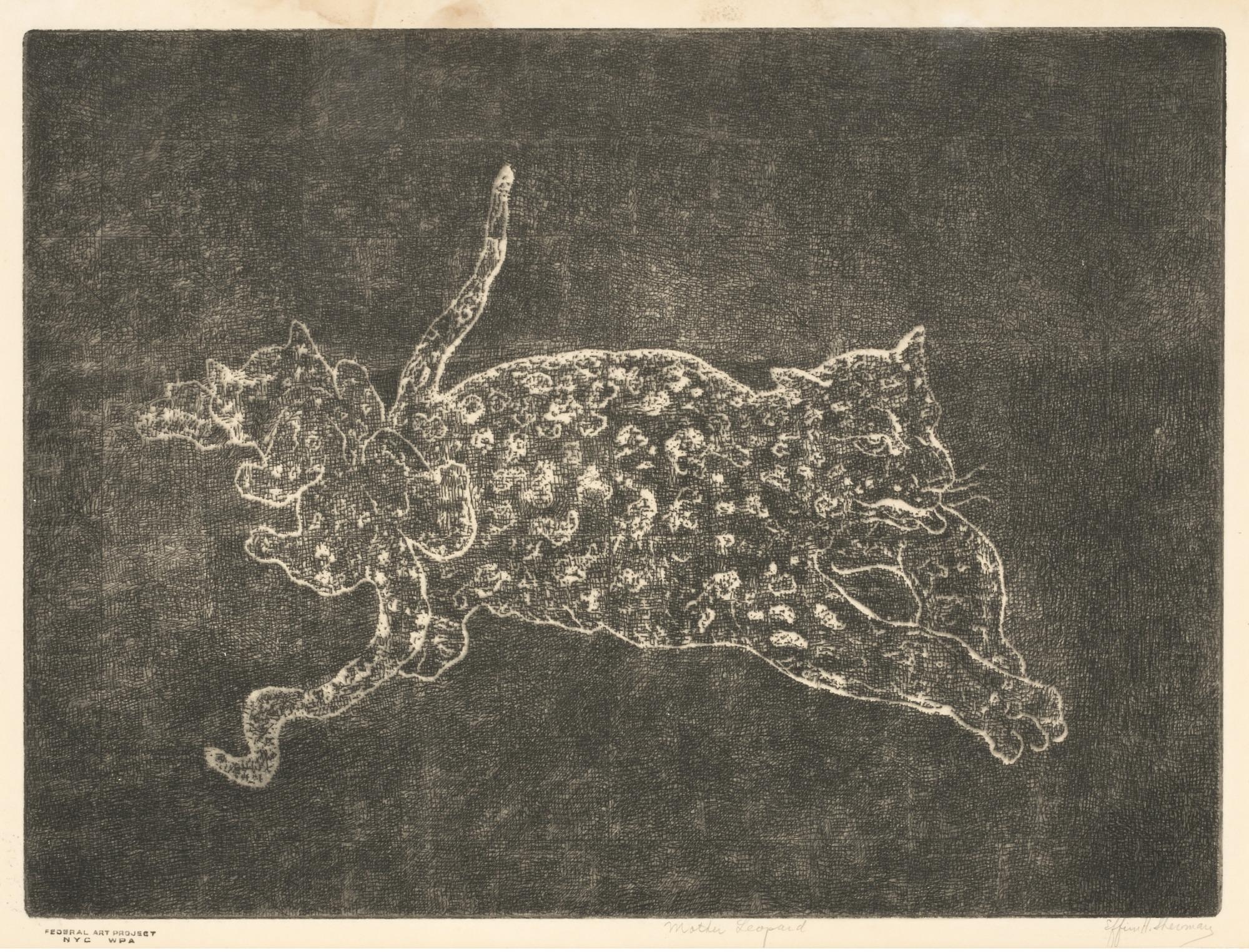 images for Mother Leopard