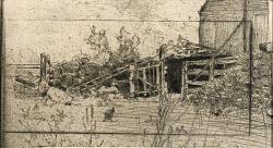 The Webb Farm
