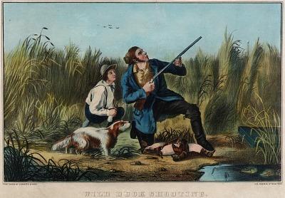 Wild Duck Shooting