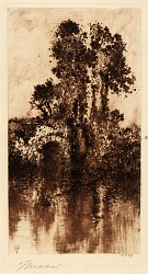 (Trees and Old Bridge)