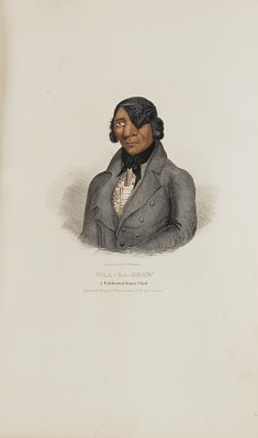WAA-BA-SHAW; A Celebrated Sioux Chief, from The Aboriginal Portfolio