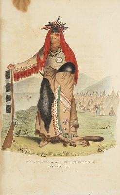 WAA-NA-TAA or the Foremost in Battle; Chief of the Sioux Tribe, from The Aboriginal Portfolio