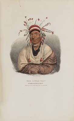 THE LITTLE CROW, A Celebrated Sioux Chief, from The Aboriginal Portfolio