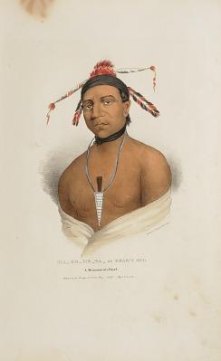 MA-KO-ME-TA or the Bear's Oil; A Monomonie Chief, from The Aboriginal Portfolio