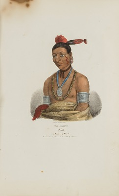 WA-KAUN or the Snake; A Winnebago Chief, from The Aboriginal Portfolio