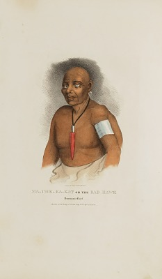 MA-CHE-KA-KAT or the Bad Hawk; A Monomonie Chief, from The Aboriginal Portfolio