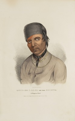 KITCH-EE-I-AA-BA or the Big Buck; A Chippewa Chief, from The Aboriginal Portfolio