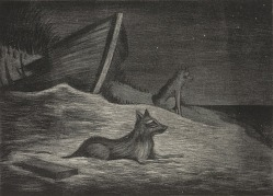 (Untitled) (Night Scene of Shoreline with Two Wolves)